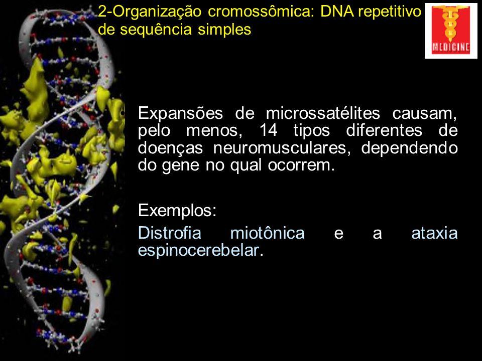 3-Organização cromossômica: DNA moderadamente repetitivo Propriedade de se deslocarem ao longo do genoma (transposição): Elementos móveis ou DNA móvel Centenas a milhares de pares de bases Transposons de DNA Retrotransposons LTR Retrotransposons não-LTR Inicialmente denominado como Simbiontes Moleculares: DNA egoísta (Francis Crick)