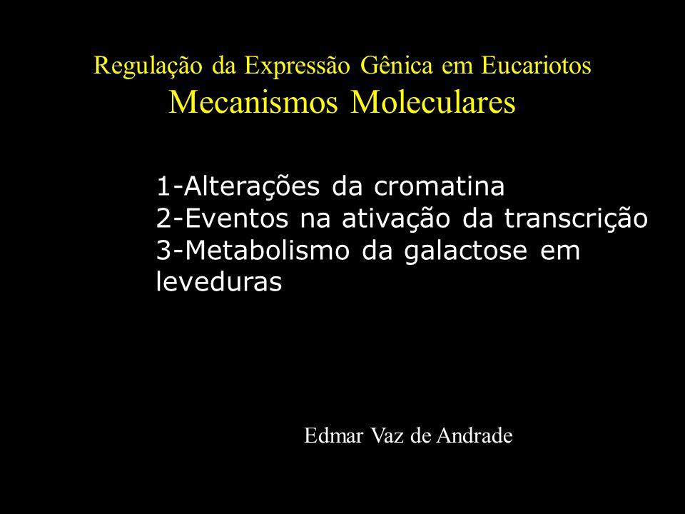 Regulação da Expressão Gênica em Eucariotos Mecanismos Moleculares Edmar Vaz de Andrade 1-Alterações da cromatina 2-Eventos na ativação da transcrição