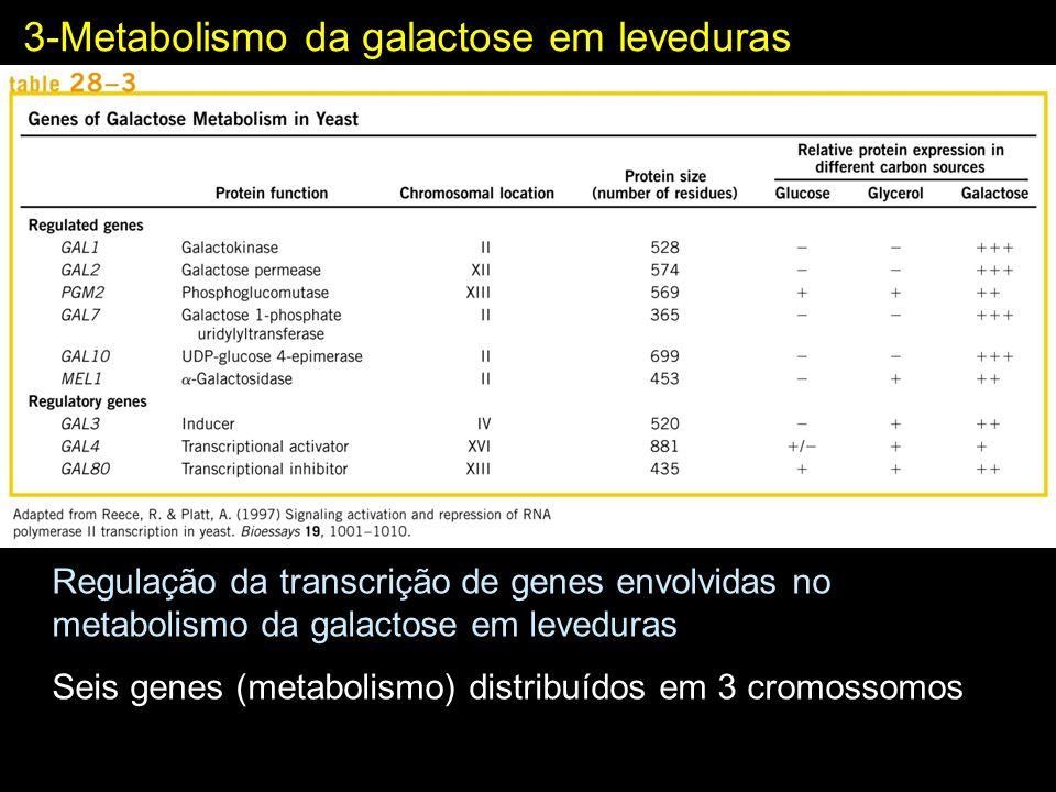 Regulação da transcrição de genes envolvidas no metabolismo da galactose em leveduras Seis genes (metabolismo) distribuídos em 3 cromossomos 3-Metabol