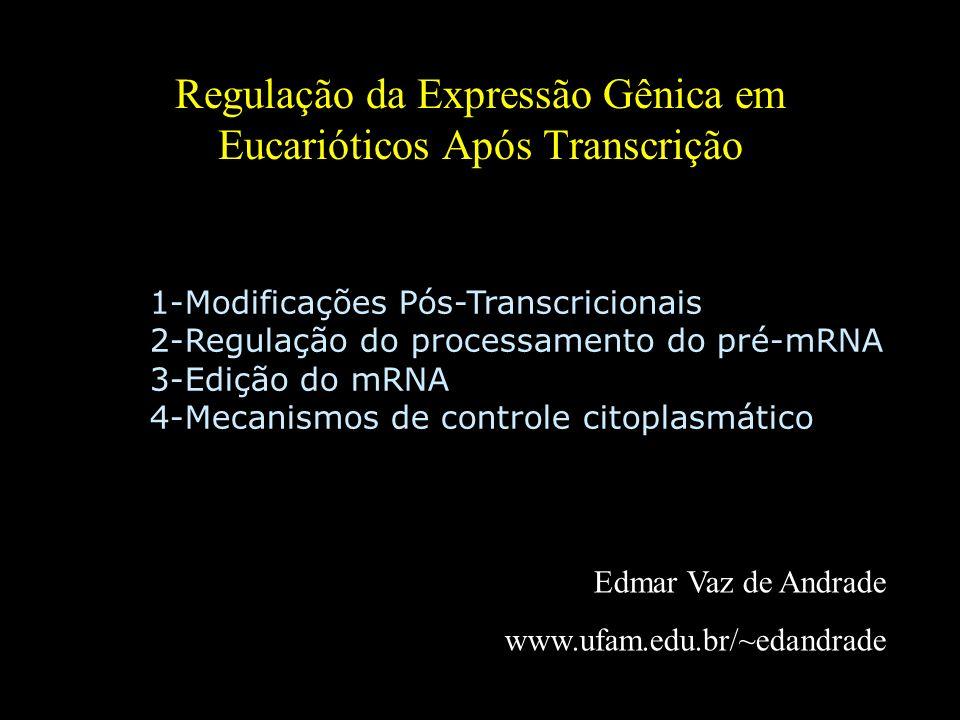 Visão geral do dogma central da biologia molecular. 1-Modificações Pós-Transcricionais