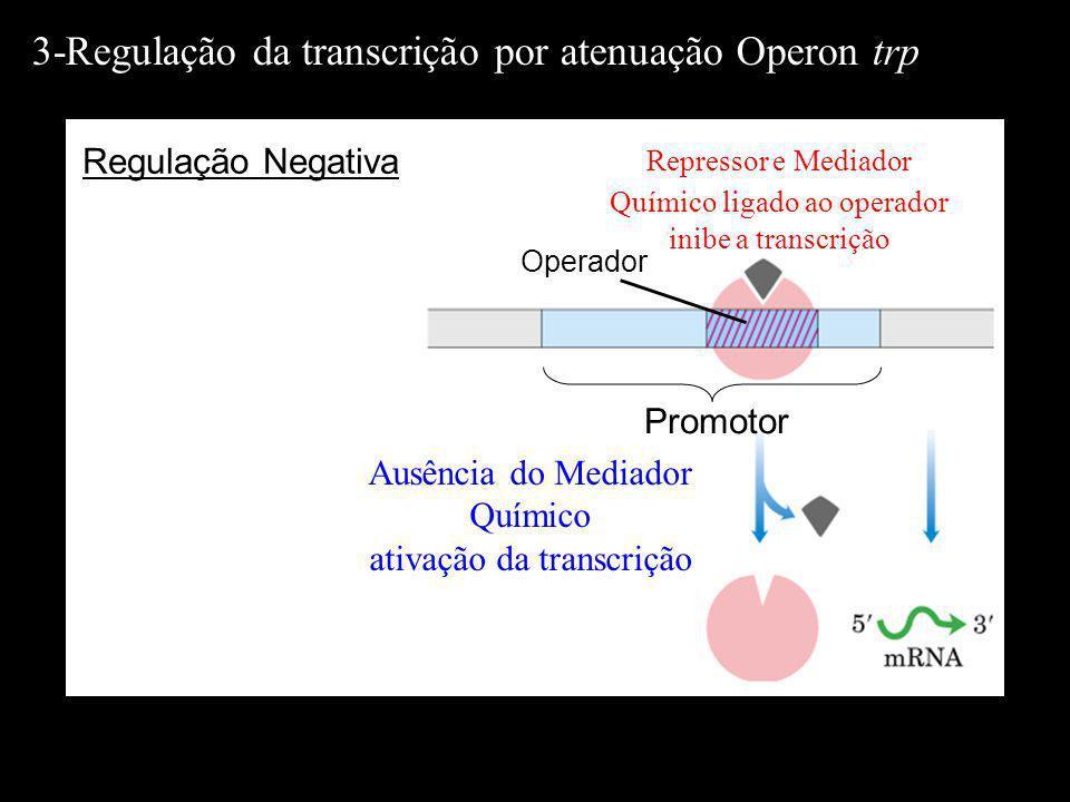 Operador Repressor e Mediador Químico ligado ao operador inibe a transcrição Promotor Ausência do Mediador Químico ativação da transcrição Regulação N