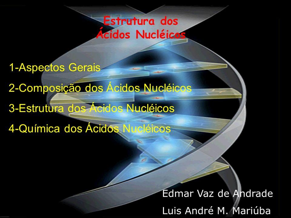 Estrutura dos Ácidos Nucléicos 1-Aspectos Gerais 2-Composição dos Ácidos Nucléicos 3-Estrutura dos Ácidos Nucléicos 4-Química dos Ácidos Nucléicos Edm