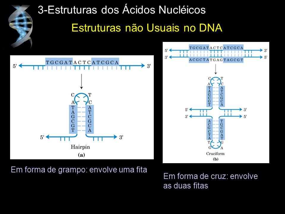 3-Estruturas dos Ácidos Nucléicos Em forma de grampo: envolve uma fita Em forma de cruz: envolve as duas fitas Estruturas não Usuais no DNA