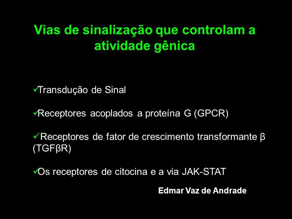 Transdução de Sinal Receptores acoplados a proteína G (GPCR) Receptores de fator de crescimento transformante β (TGFβR) Os receptores de citocina e a