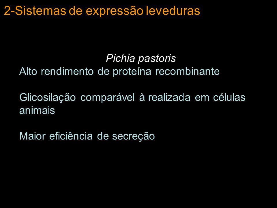 2-Sistemas de expressão leveduras Vetor de Expressão em Pichia pastoris Origem de replicação em E.