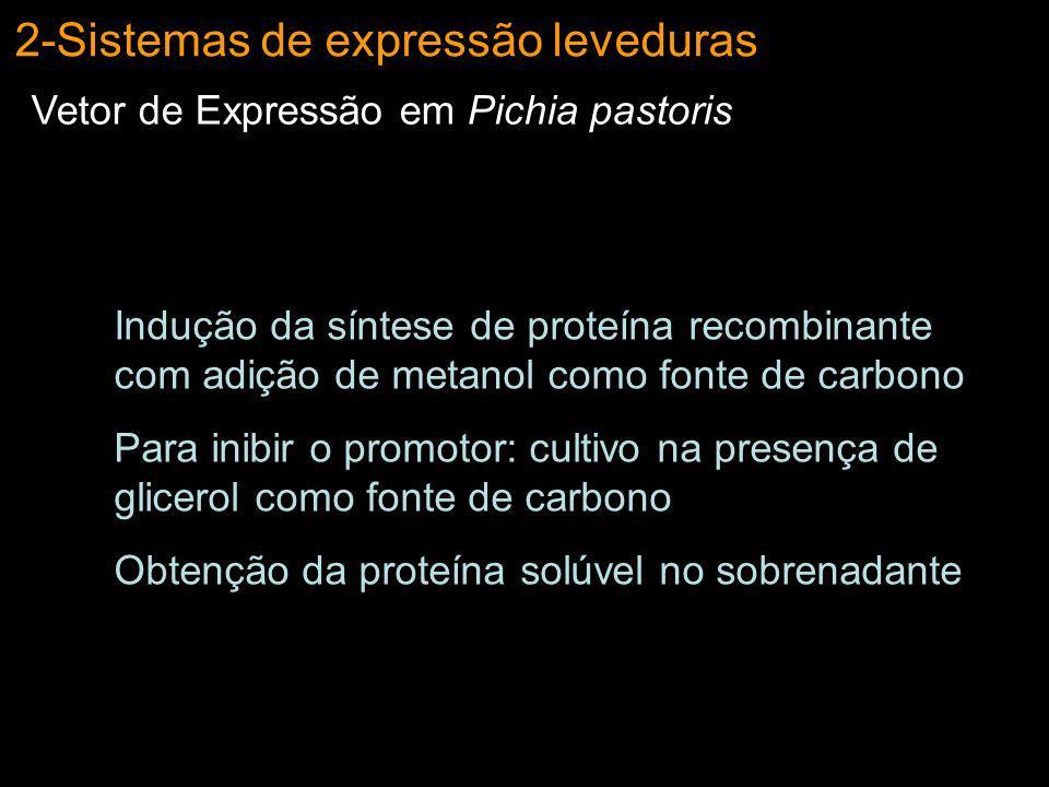 2-Sistemas de expressão leveduras Vetor de Expressão em Pichia pastoris Indução da síntese de proteína recombinante com adição de metanol como fonte d