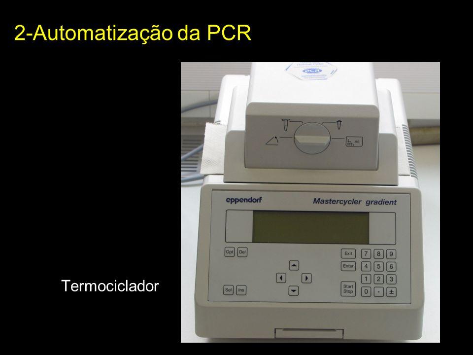 Etapas básicas da PCR: 1- desnaturação térmica do DNA molde 2- Anelamento de oligonucleotídeos sintéticos – iniciadores 3- Polimerização das novas fitas a partir dos iniciadores 2-Automatização da PCR