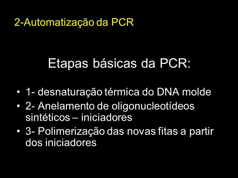 Etapas básicas da PCR: 1- desnaturação térmica do DNA molde 2- Anelamento de oligonucleotídeos sintéticos – iniciadores 3- Polimerização das novas fit
