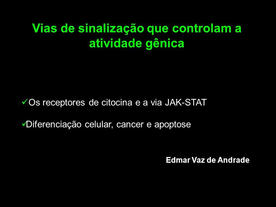 Os receptores de citocina e a via JAK-STAT Diferenciação celular, cancer e apoptose Vias de sinalização que controlam a atividade gênica Edmar Vaz de Andrade