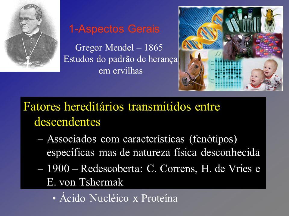 Friedrich Miescher – 1868 Primeiros Estudos Bioquímicos do Núcleo Celular Núcleos de células derivadas de curativos cirúrgicos (leucócitos de secreção purulenta) –Substância rica em fósforo e nitrogênio (nucleína), contendo uma porção ácida e uma porção básica.