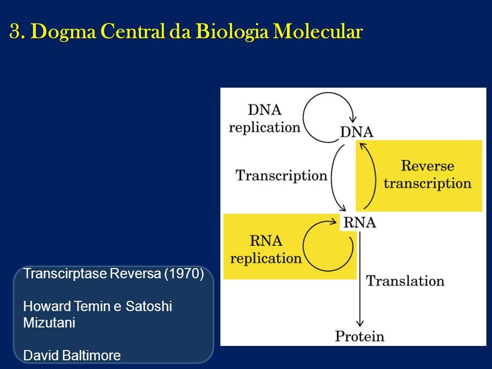 3. Dogma Central da Biologia Molecular Transcirptase Reversa (1970) Howard Temin e Satoshi Mizutani David Baltimore