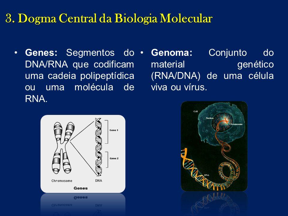 Genes: Segmentos do DNA/RNA que codificam uma cadeia polipeptídica ou uma molécula de RNA. Genoma: Conjunto do material genético (RNA/DNA) de uma célu