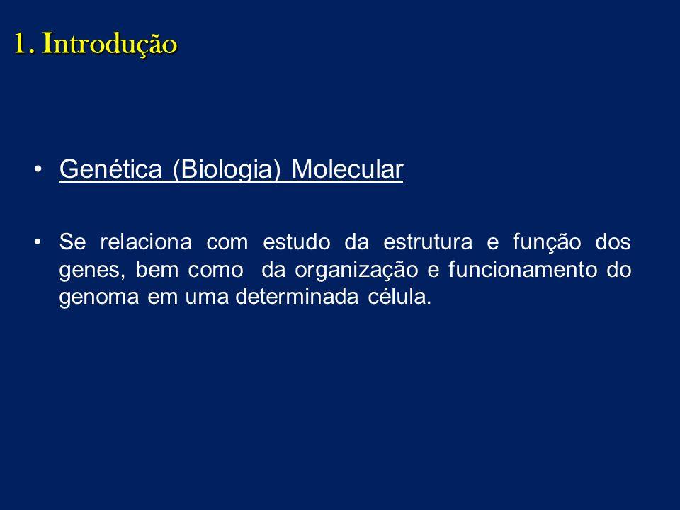 1. Introdução Genética (Biologia) Molecular Se relaciona com estudo da estrutura e função dos genes, bem como da organização e funcionamento do genoma