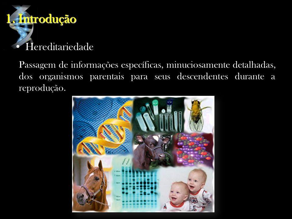 1. Introdução Hereditariedade Passagem de informações específicas, minuciosamente detalhadas, dos organismos parentais para seus descendentes durante