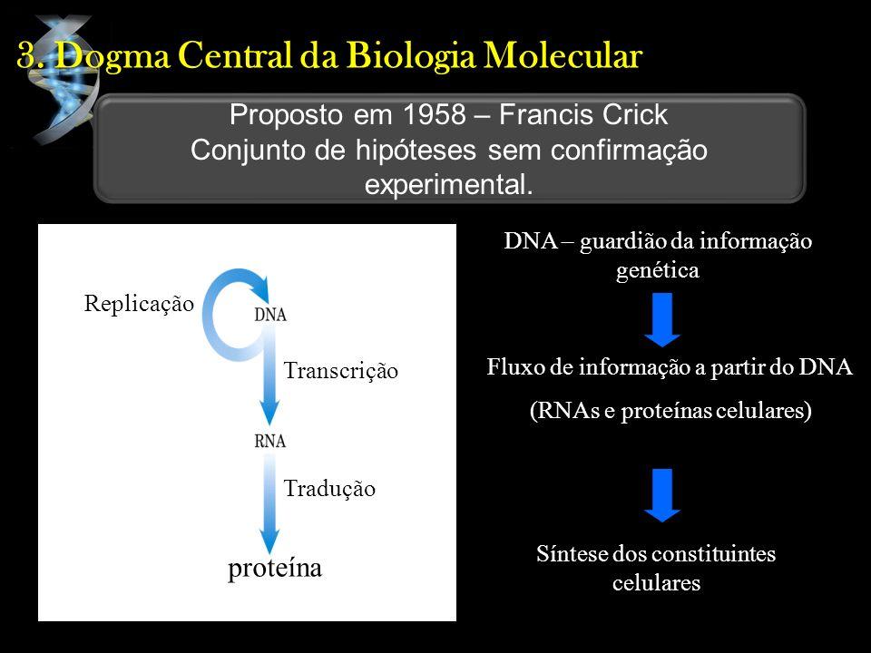 3. Dogma Central da Biologia Molecular DNA – guardião da informação genética Fluxo de informação a partir do DNA (RNAs e proteínas celulares) Síntese