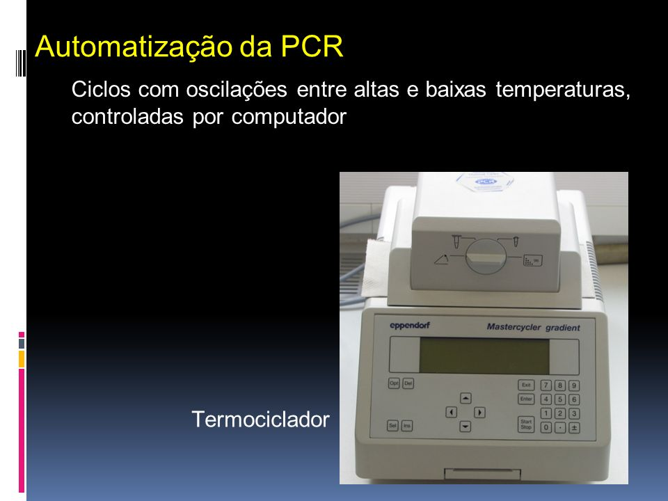 Termociclador Automatização da PCR Ciclos com oscilações entre altas e baixas temperaturas, controladas por computador