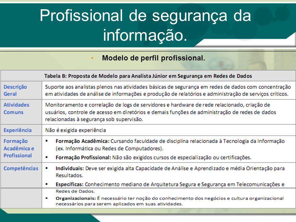 Profissional de segurança da informação. Modelo de perfil profissional.