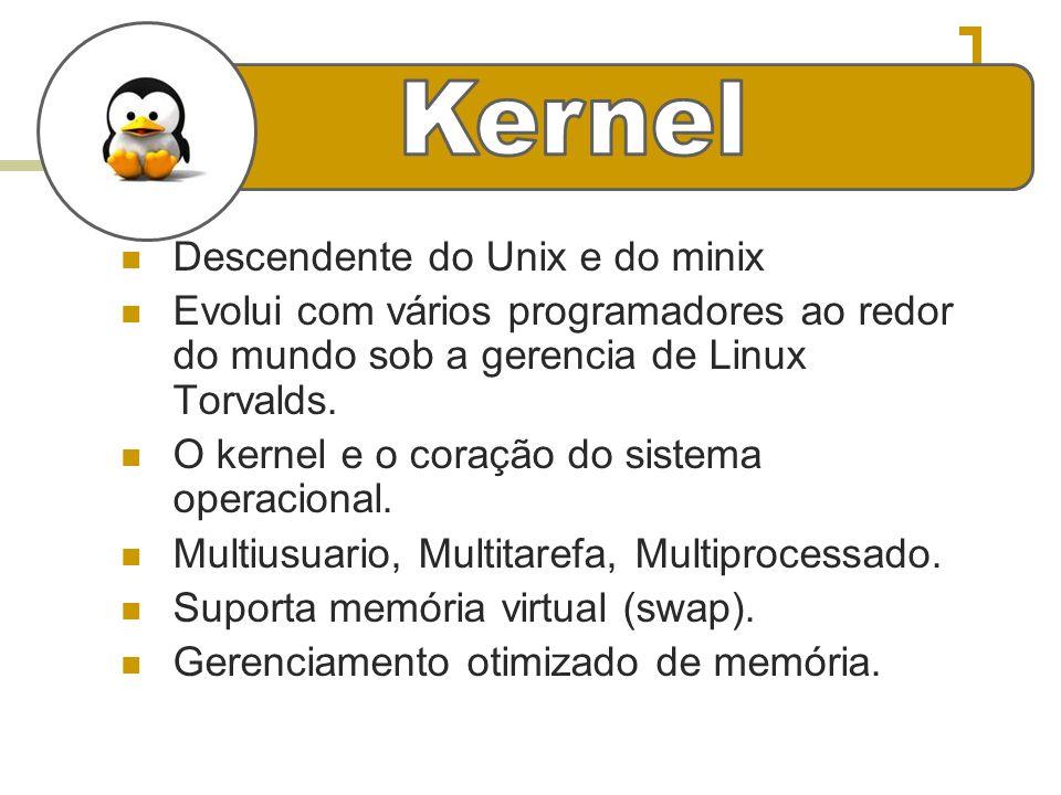 e Descendente do Unix e do minix Evolui com vários programadores ao redor do mundo sob a gerencia de Linux Torvalds. O kernel e o coração do sistema o