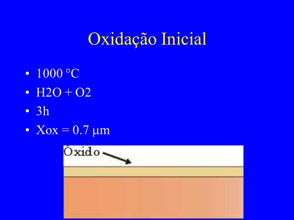 Oxidação Inicial 1000 °C H2O + O2 3h Xox = 0.7 m