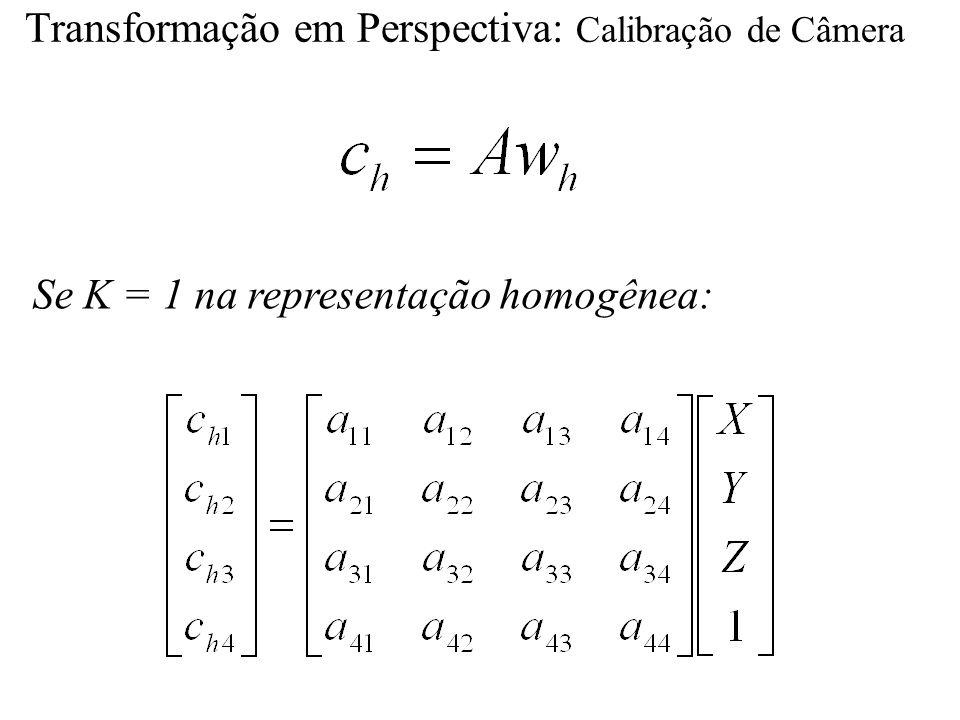 Se K = 1 na representação homogênea: