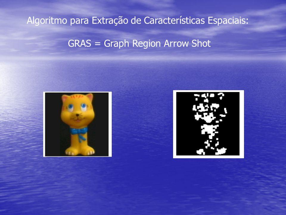 Algoritmo para Extração de Características Espaciais: GRAS = Graph Region Arrow Shot