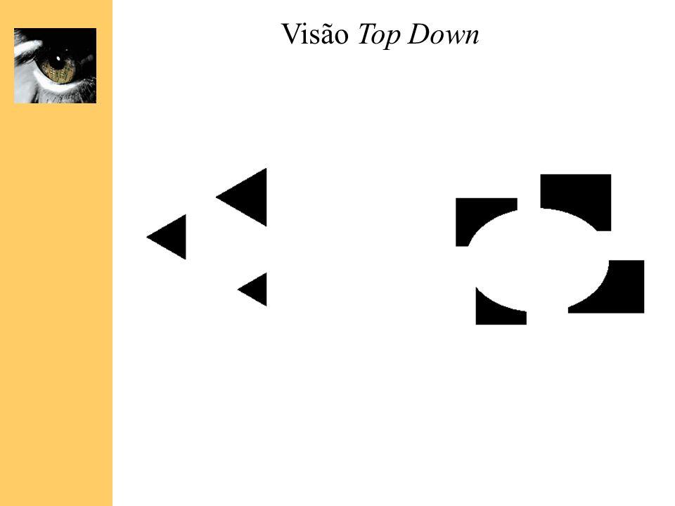 Visão Top Down