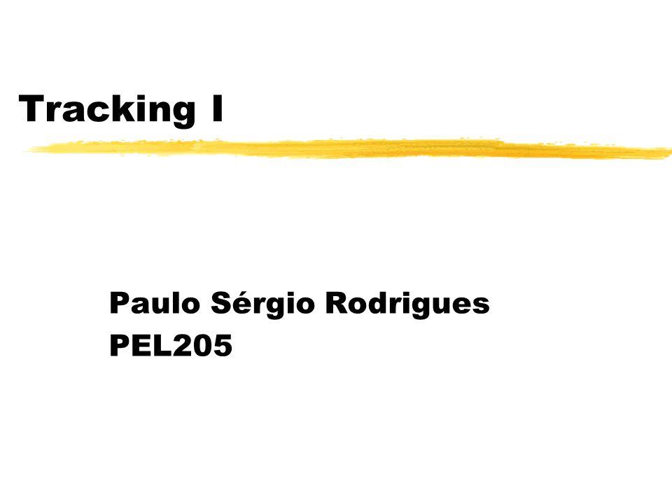 Tracking I Paulo Sérgio Rodrigues PEL205