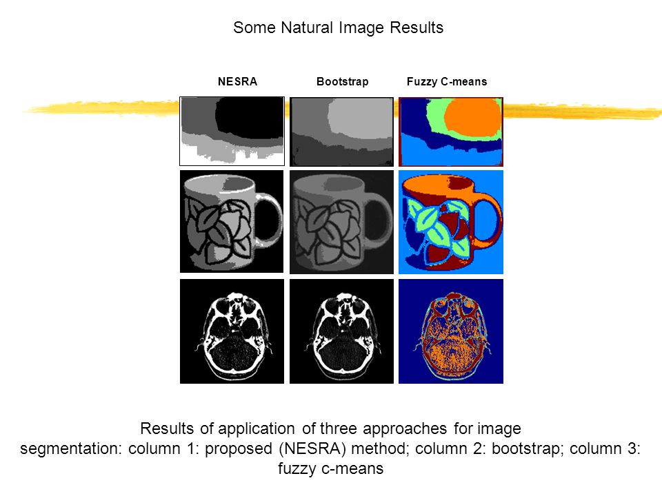 Results of application of three approaches for image segmentation: column 1: proposed (NESRA) method; column 2: bootstrap; column 3: fuzzy c-means Som