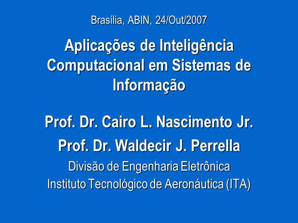 Brasília, ABIN, 24/Out/2007 Aplicações de Inteligência Computacional em Sistemas de Informação Prof. Dr. Cairo L. Nascimento Jr. Prof. Dr. Waldecir J.