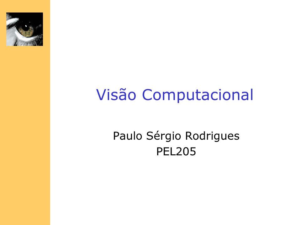 Visão Computacional Paulo Sérgio Rodrigues PEL205