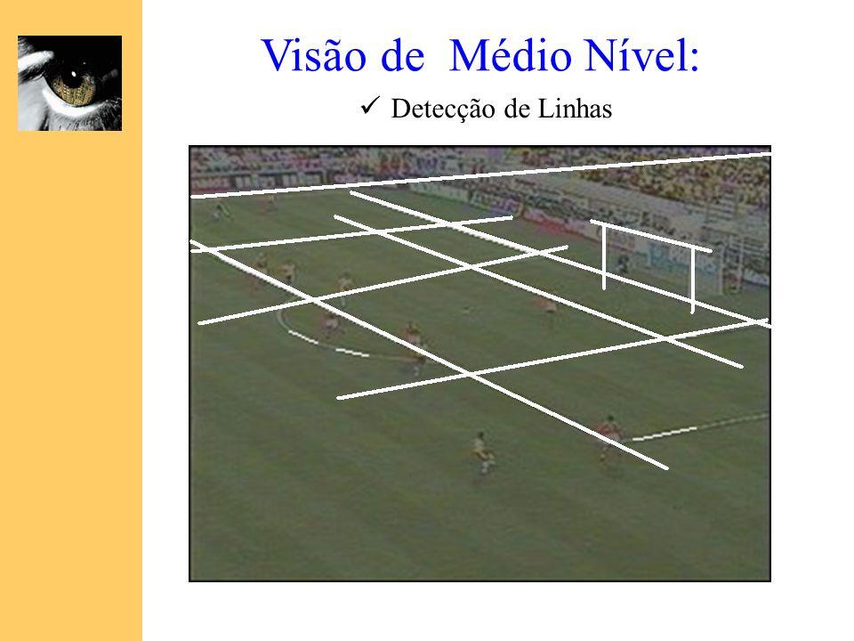 Visão de Médio Nível: Detecção de Linhas