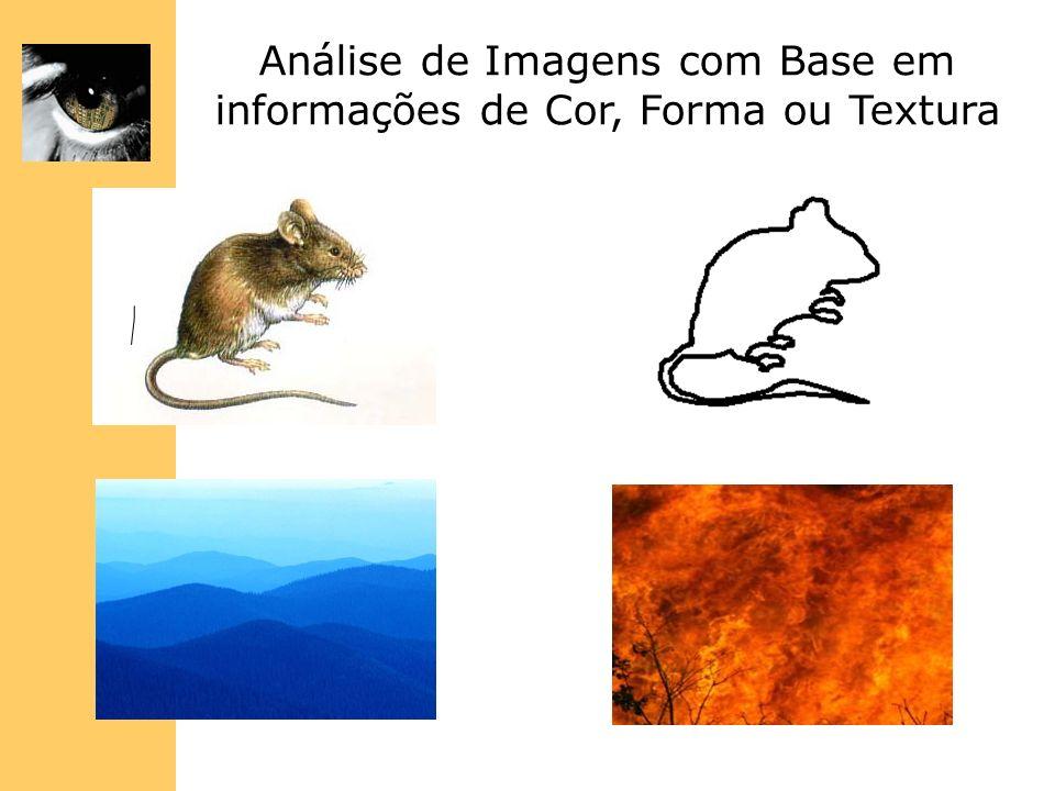 Análise de Imagens com Base em informações de Cor, Forma ou Textura