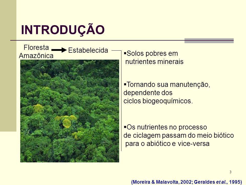 3 INTRODUÇÃO Solos pobres em nutrientes minerais Tornando sua manutenção, dependente dos ciclos biogeoquímicos. Os nutrientes no processo de ciclagem