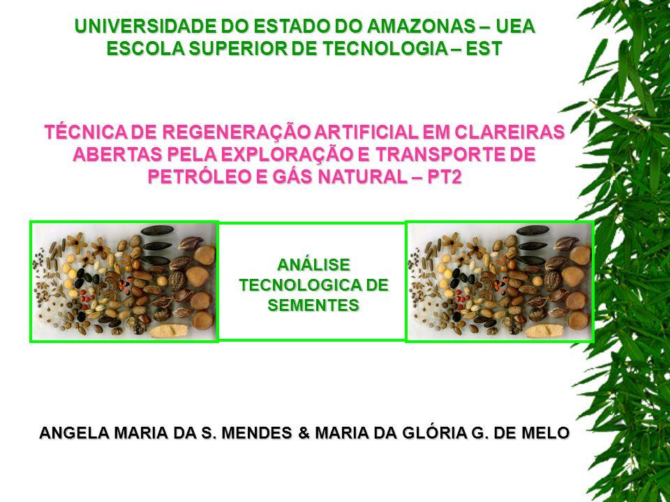 UNIVERSIDADE DO ESTADO DO AMAZONAS – UEA ESCOLA SUPERIOR DE TECNOLOGIA – EST TÉCNICA DE REGENERAÇÃO ARTIFICIAL EM CLAREIRAS ABERTAS PELA EXPLORAÇÃO E