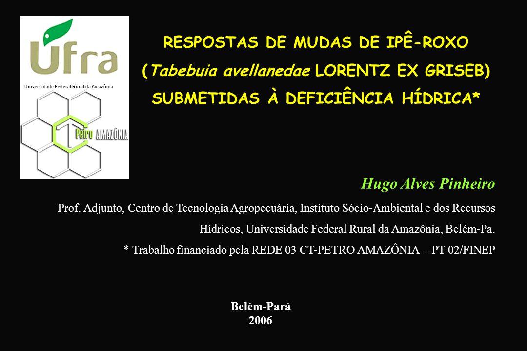RESPOSTAS DE MUDAS DE IPÊ-ROXO (Tabebuia avellanedae LORENTZ EX GRISEB) SUBMETIDAS À DEFICIÊNCIA HÍDRICA* Hugo Alves Pinheiro Prof. Adjunto, Centro de