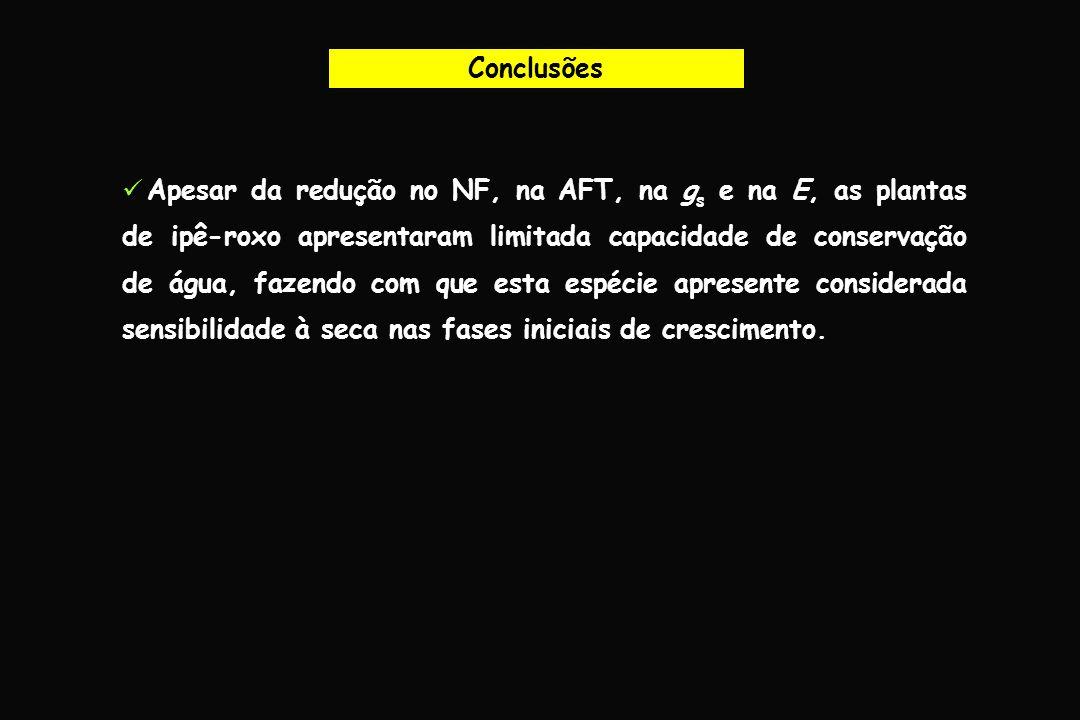 Conclusões Apesar da redução no NF, na AFT, na g s e na E, as plantas de ipê-roxo apresentaram limitada capacidade de conservação de água, fazendo com