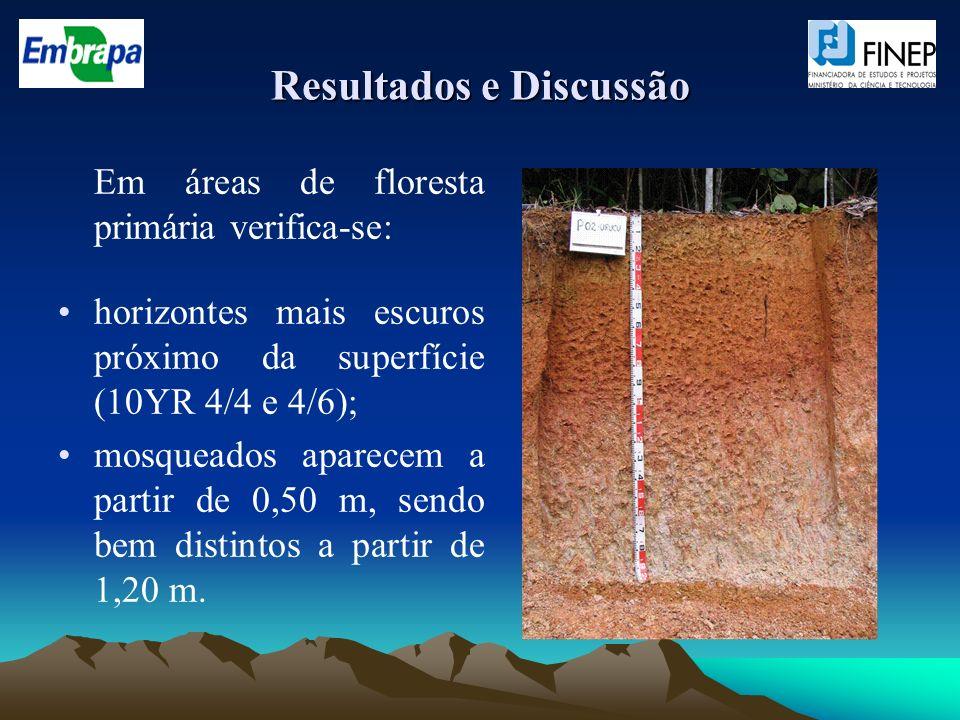 Resultados e Discussão Em áreas de floresta primária verifica-se: horizontes mais escuros próximo da superfície (10YR 4/4 e 4/6); mosqueados aparecem