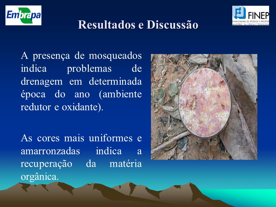 Resultados e Discussão A presença de mosqueados indica problemas de drenagem em determinada época do ano (ambiente redutor e oxidante). As cores mais