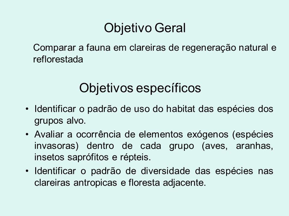 Objetivo Geral Comparar a fauna em clareiras de regeneração natural e reflorestada Objetivos específicos Identificar o padrão de uso do habitat das es