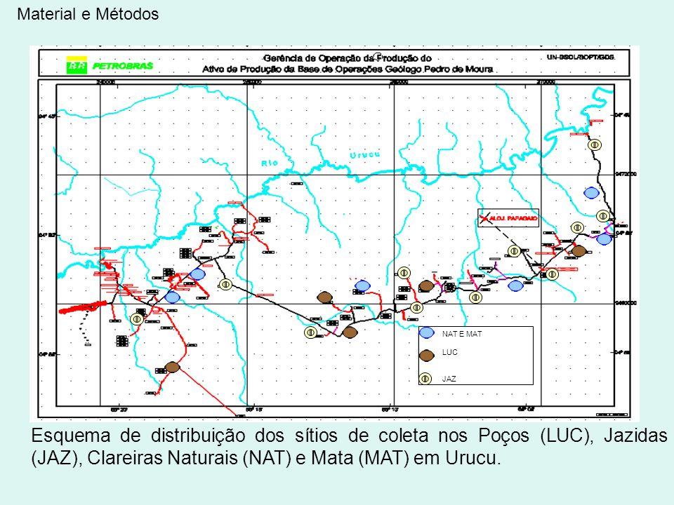 NAT E MAT LUC JAZ Esquema de distribuição dos sítios de coleta nos Poços (LUC), Jazidas (JAZ), Clareiras Naturais (NAT) e Mata (MAT) em Urucu. Materia