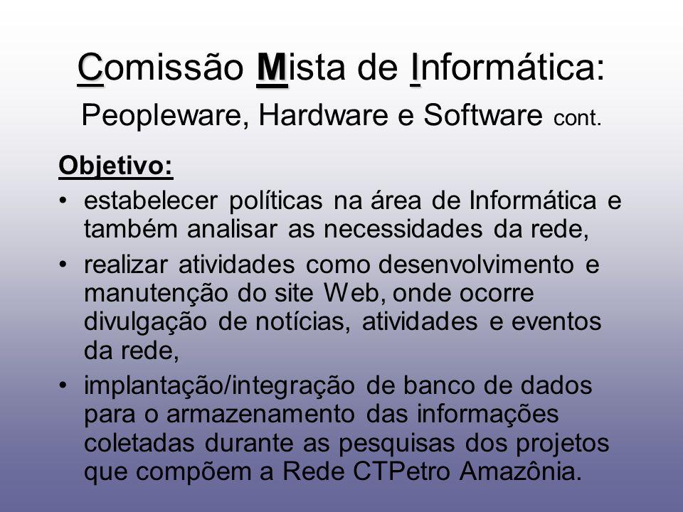Objetivo: estabelecer políticas na área de Informática e também analisar as necessidades da rede, realizar atividades como desenvolvimento e manutençã