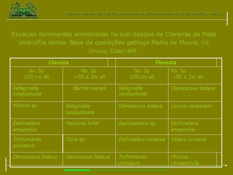 CTPetro- Proj: DINÂMICA DE CLAREIRAS SOB IMAPCTO DA EXPLORAÇÃO PETROLÍFERA - DICLA Espécies dominantes amostradas no sub-bosque de Clareiras de Mata o