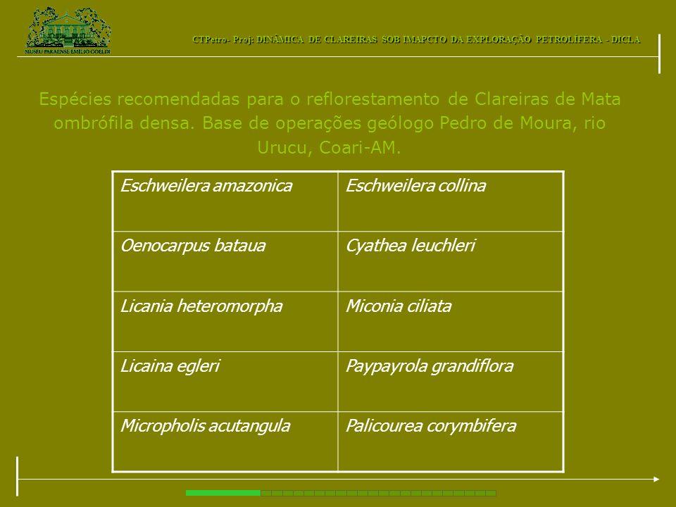 CTPetro- Proj: DINÂMICA DE CLAREIRAS SOB IMAPCTO DA EXPLORAÇÃO PETROLÍFERA - DICLA Espécies recomendadas para o reflorestamento de Clareiras de Mata o
