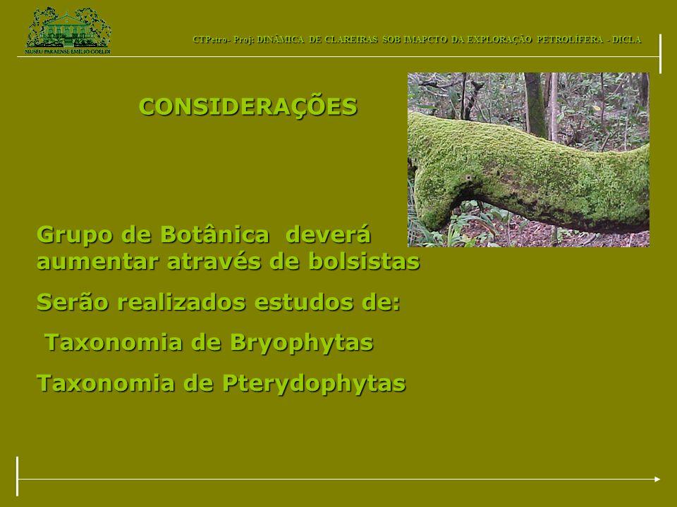 CTPetro- Proj: DINÂMICA DE CLAREIRAS SOB IMAPCTO DA EXPLORAÇÃO PETROLÍFERA - DICLA CONSIDERAÇÕES Grupo de Botânica deverá aumentar através de bolsista