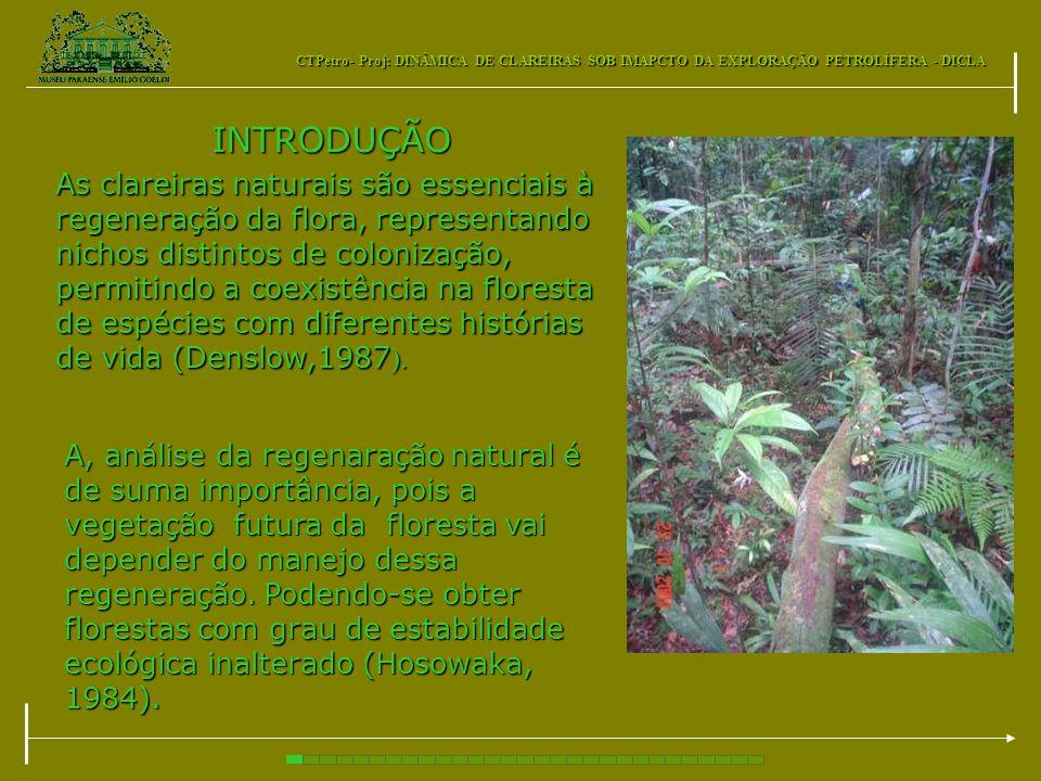 INTRODUÇÃO A, análise da regenaração natural é de suma importância, pois a vegetação futura da floresta vai depender do manejo dessa regeneração. Pode