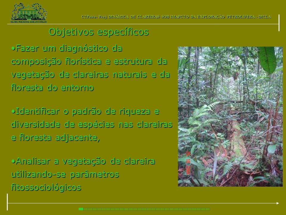 CTPetro- Proj: DINÂMICA DE CLAREIRAS SOB IMAPCTO DA EXPLORAÇÃO PETROLÍFERA - DICLA Objetivos específicos Fazer um diagnóstico da composição florística
