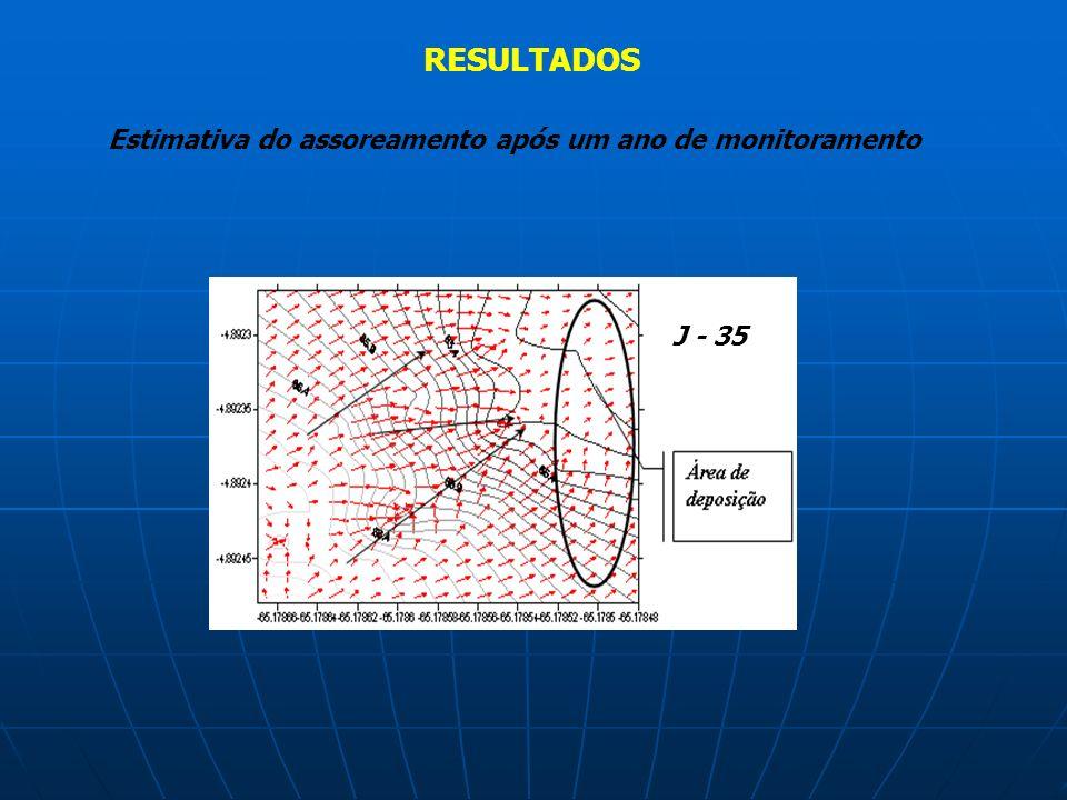 RESULTADOS Estimativa do assoreamento após um ano de monitoramento J - 35