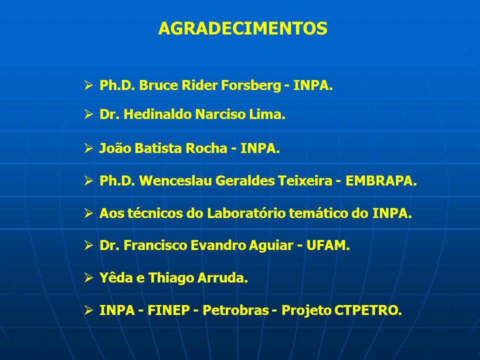 AGRADECIMENTOS Ph.D. Bruce Rider Forsberg - INPA. Dr. Hedinaldo Narciso Lima. João Batista Rocha - INPA. Ph.D. Wenceslau Geraldes Teixeira - EMBRAPA.