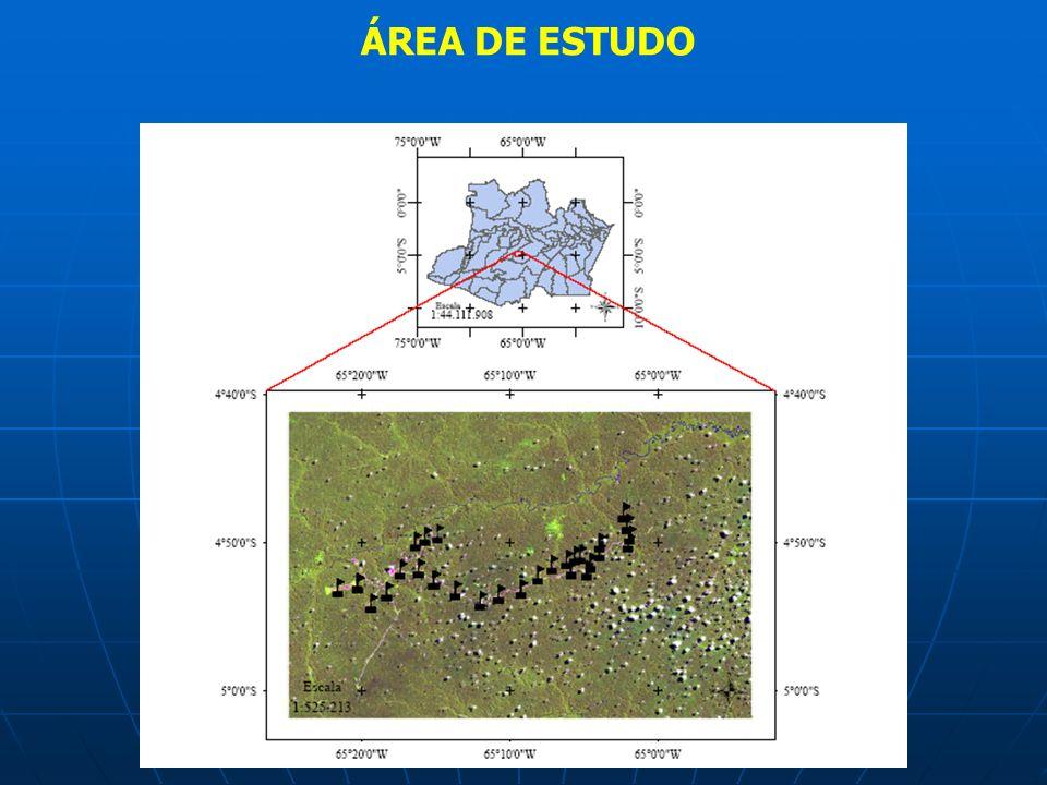 OBJETIVOS GERAL Estimar a perda de solo em área de exploração de petróleo e gás pela mudança do relevo do solo através de pinos.