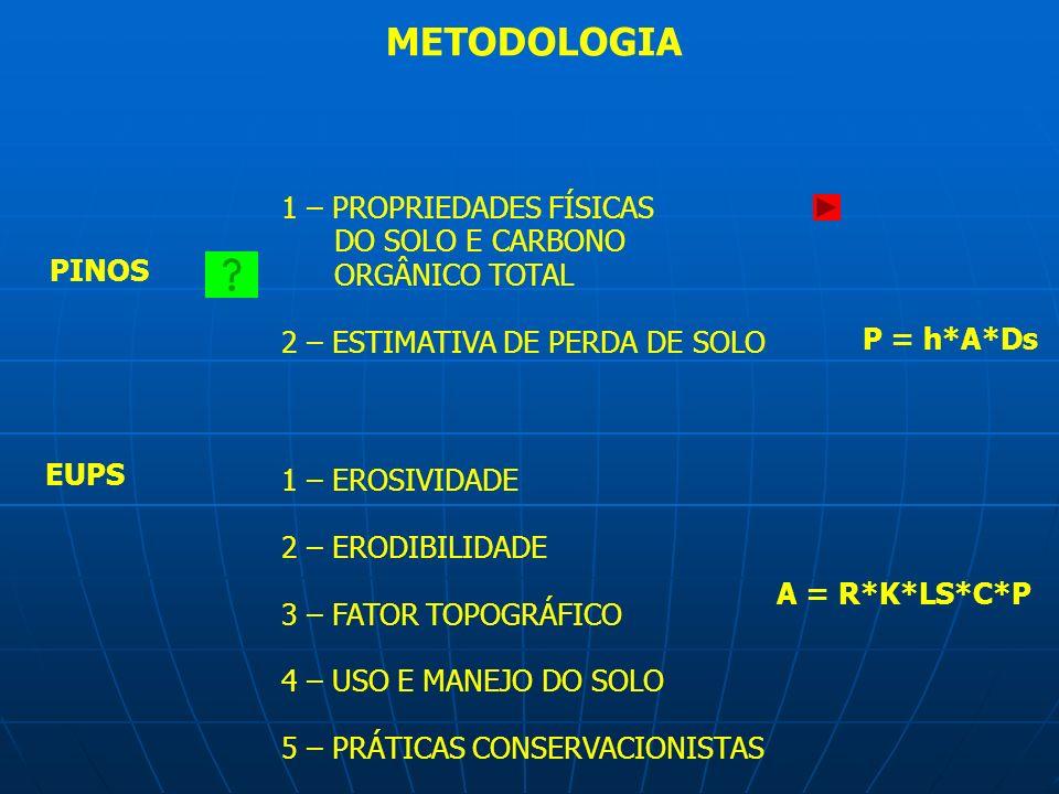 PINOS EUPS 1 – PROPRIEDADES FÍSICAS DO SOLO E CARBONO ORGÂNICO TOTAL 2 – ESTIMATIVA DE PERDA DE SOLO A = R*K*LS*C*P P = h*A*Ds 1 – EROSIVIDADE 2 – ERO